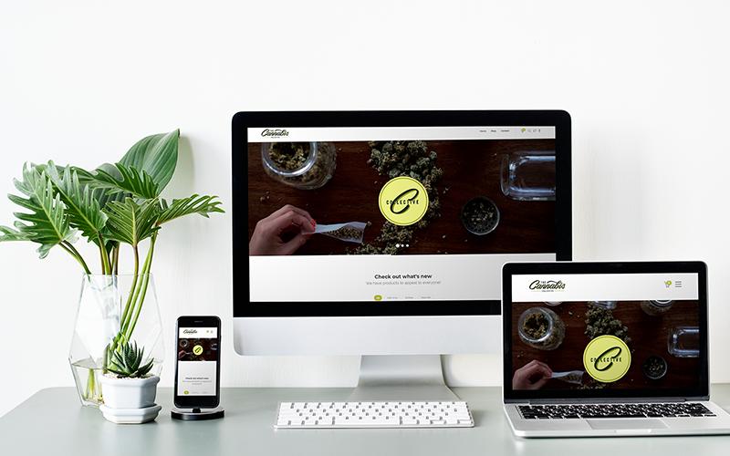 The Cannabis Collective weed vape pens edibles vape pen Vancouver Canada | Monika Szucs