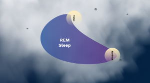 REM stage Dreams Psychology Prezi Presentation for BCIT Psyc 1101 | Monika Szucs