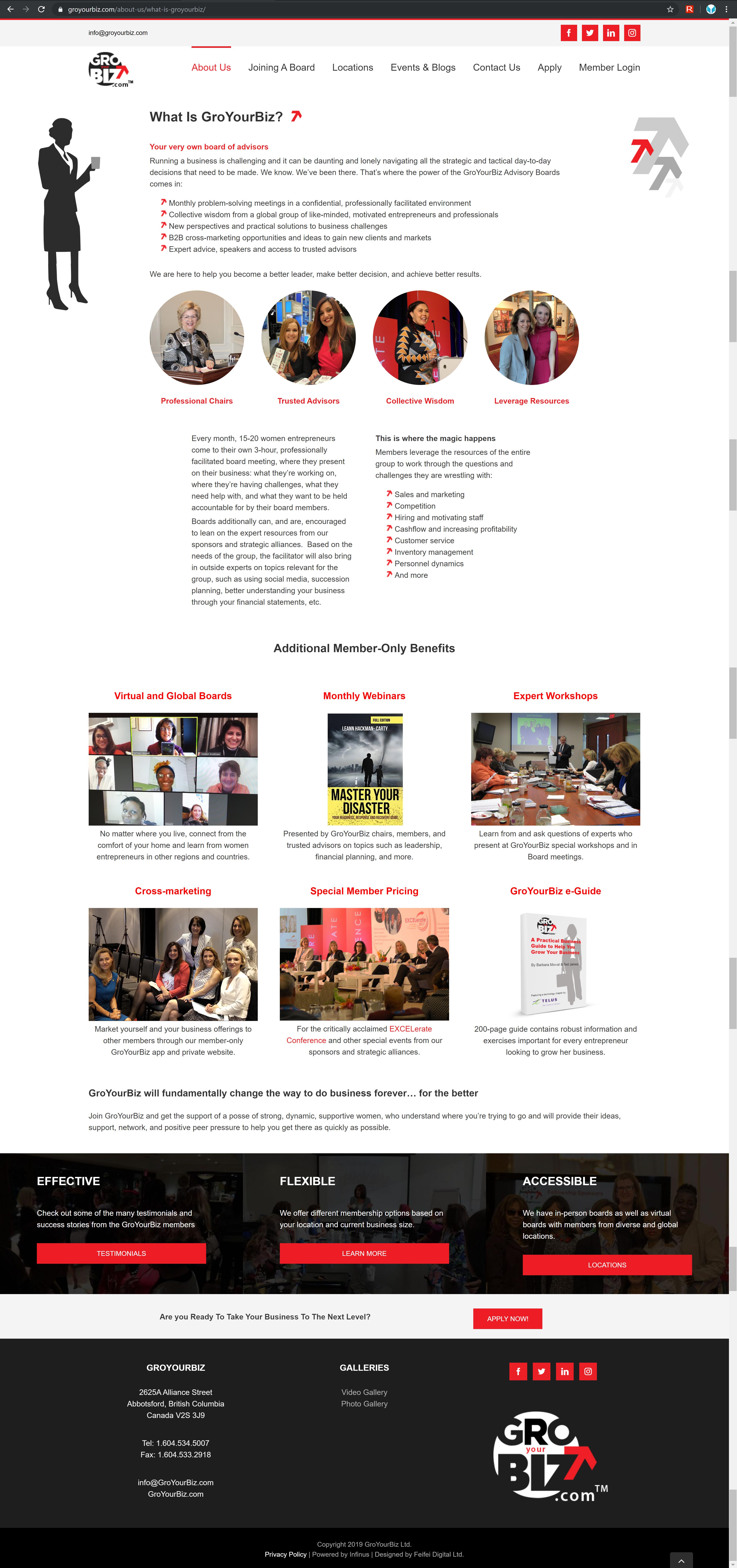 GroYourBiz What is GroYourBiz Page | User Interface and Front End Development | Feifei Digital | Monika Szucs